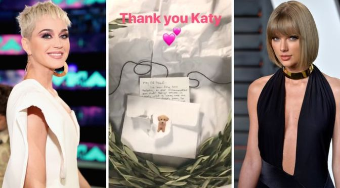 #KatyPerry offers an Olive Branch to #TaylorSwift..a real one! [details]