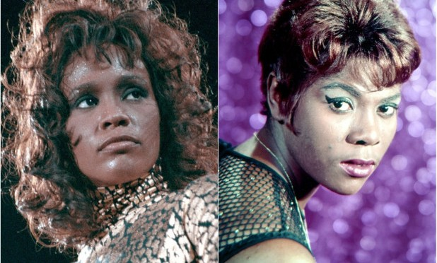 #WhitneyHouston ALLEGEDLY sexually abused by cousin #DeeDeeWarwick! [details]