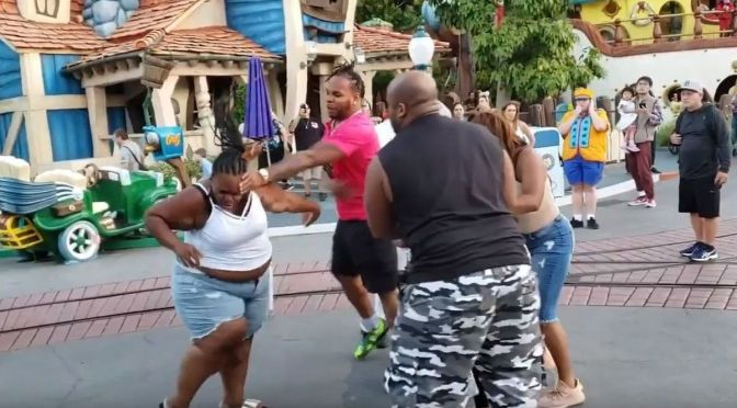 N*ggas In #Disney! Brawl breaks out! Man assaults 2 women at Disneyland! [Vid]