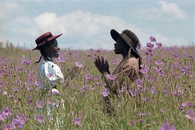 #TheColorPurple RETURNS to theaters for 35th Anniversary! [Details]