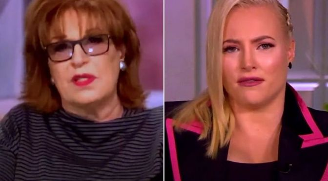 """#TheView: #JoyBehar to #MeghanMcCain upon return from maternity leave, 'No, I Did Not Miss You!"""" [Vid]"""